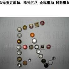供应广东新款爪钮五爪钮钮扣