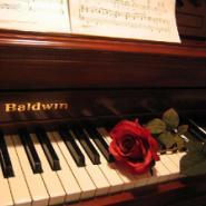 2手钢琴进口流程YAMAHA雅马哈进口图片