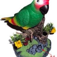 电动声控鸟玩具鸟摆设鸟图片