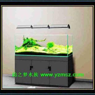 仿ADA板式超白鱼缸图片