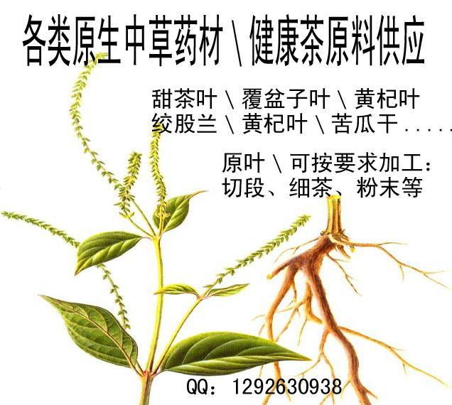 植物原药材原生批发加工销售