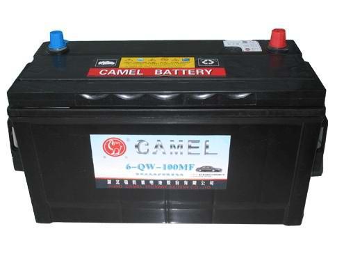 骆驼牵引蓄电池型号图片1