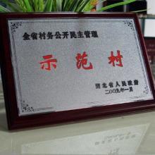供应广州木质奖牌,广州木质奖牌定做厂家,广州授权牌制作,木质授权牌批发