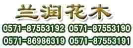 杭州追棕办公室绿化有限公司