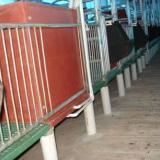 长兴荣泉独家研发BMC复合材料漏缝板保温箱电热板料槽畜牧设备产品原创