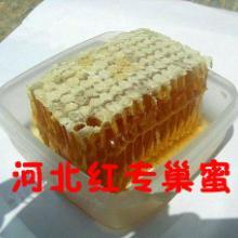 供应红专蜂蜜天然巢蜜真空盒包装1批发