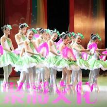 杭州民族舞表演杭州印度舞表演