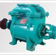 山东生产SK-12水环真空泵图片