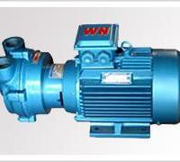 塑料机械专用2BV水环式真空泵