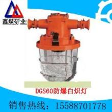 供应DGS60防爆白炽灯