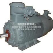 YBBP低压大功率变频调速电动机图片