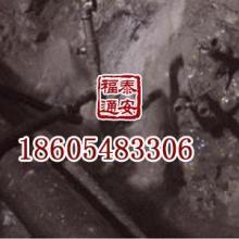 供应贵州高瓦斯矿专用化学喷涂材料