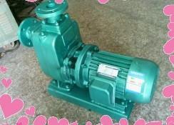 供应通一ISW型卧式离心泵 200口径