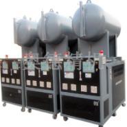 大底硫化机热媒炉图片