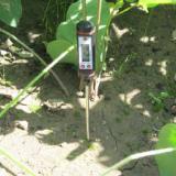供应针式土壤温度计