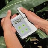 供应植物叶绿素测定仪叶绿素测定仪