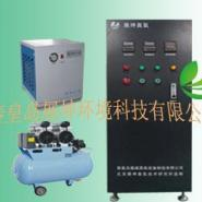 ZCM-A-150中型臭氧发生器图片