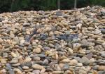 供应河卵石【装饰用】