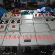 BXX防爆动力检修箱图片