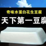 供应伊春 豆腐机