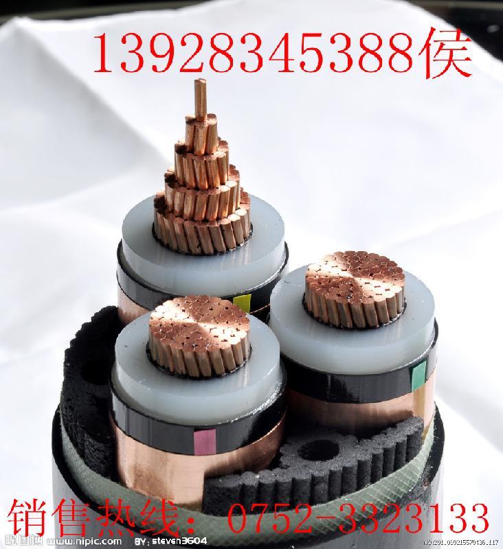 电缆金龙羽图片/电缆金龙羽样板图 (1)