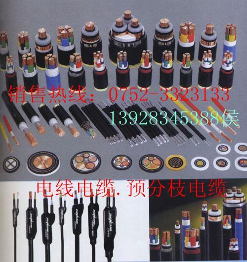 电缆金龙羽图片/电缆金龙羽样板图 (3)