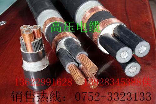 电缆金龙羽图片/电缆金龙羽样板图 (4)