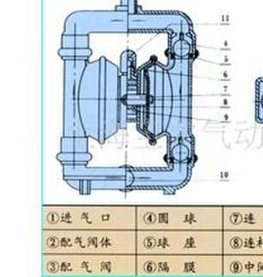 QBY衬氟衬胶气动隔膜图片/QBY衬氟衬胶气动隔膜样板图 (3)