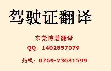中国驾照翻译模板下载