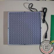 15W小功率LED植物生长灯图片