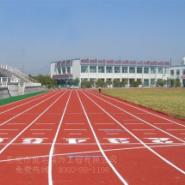 潮南复合型跑道图片