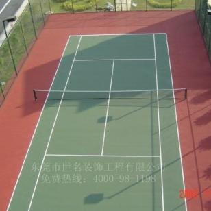 广东佛山硅PU球场图片