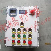 防爆自动控制箱/仪表箱/温度控制仪表箱/电表箱