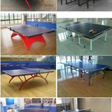 供应温泉乒乓球台红双喜乒乓球台发球机批发