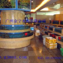 供应海南海鲜池设计