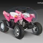 2009款北极星沙滩车Outlaw90图片