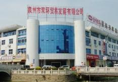 福建省泉州市双环贸易有限公司威伯科项目组简介