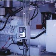 OEM宾士动力双燃料发动机图片