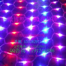 特供最流行的全彩 单色 常亮 闪变LED网灯/微亮照明加工企业图片
