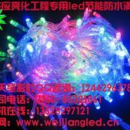 上海最低价迷你彩灯/最低价装饰灯图片