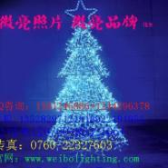 微亮节日习俗亮化装饰灯led彩色灯图片