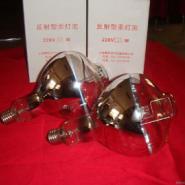东莞电镀反射灯泡供货商图片
