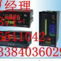 LED多路巡检控制仪香港昌辉仪表图片