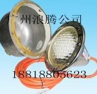 雷达SSN系列不锈钢水下灯/嵌入式水下灯/12V/300W/游泳