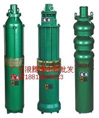 供应广东广州优质的喷泉专用潜水泵