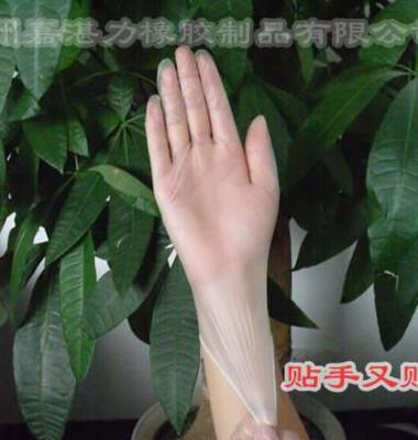 广州直销PVC无粉手套图片/广州直销PVC无粉手套样板图 (2)
