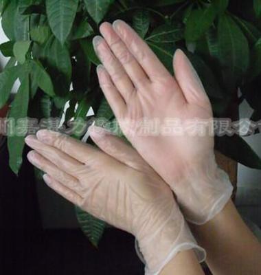 广州直销PVC无粉手套图片/广州直销PVC无粉手套样板图 (1)