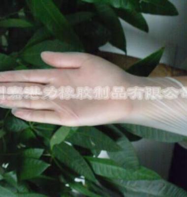 广州直销PVC无粉手套图片/广州直销PVC无粉手套样板图 (4)