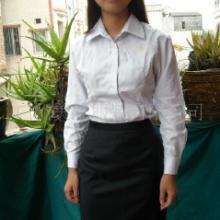 广州天河区女裙女裤专业订做厂家,天河区西裙西裤订做,天河区西装订做图片