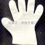 供应一次性薄膜手套薄膜手套专营